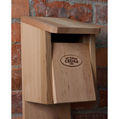 CEDAR Blue Jay Bird House
