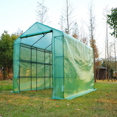 8' x 6' Medium Greenhouse