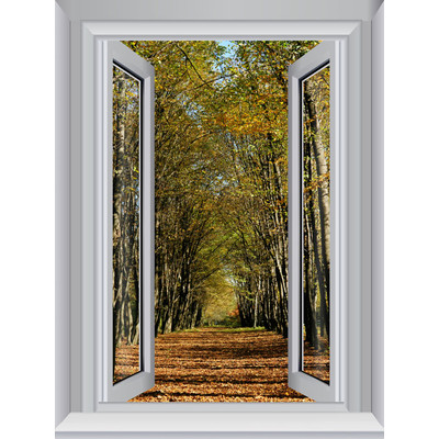 JP London AMD7A016 Prepasted Removable Forest Trees Large Window Wall Mural 4 feet by 3 feet