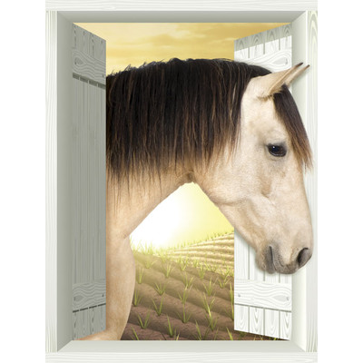 JP London AMD7A025 Prepasted Removable Horse Plain Large Window Wall Mural 4 feet by 3 feet