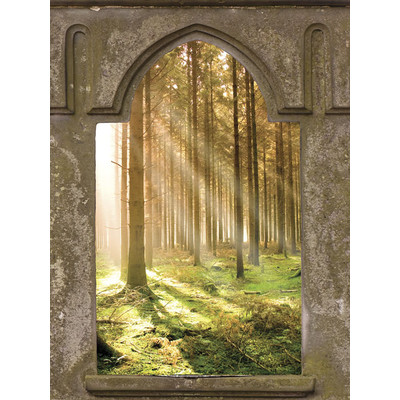 JP London UMB91126 Large Prepasted Removable Mystic Forest Rays Window Wall Mural 4 feet high by 3 feet wide