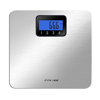 Papago! GFSSL-US GOLiFE Fit Bluetooth Smart Scale, Stainless Steel - 1 Year Limited Warranty