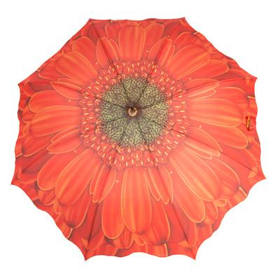 Austin House Orange Gerbera 8 Panel Stick Umbrella