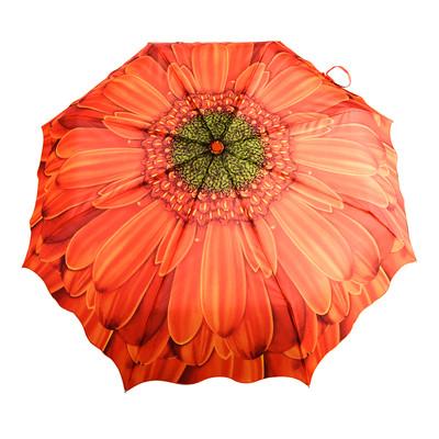 Austin House Orange Gerbera Telescopic Umbrella