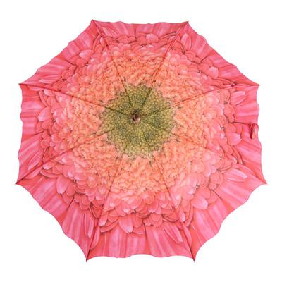 Austin House Berry Chrysanthemum 8 Panel Stick Umbrella
