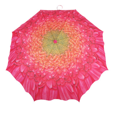 Austin House Berry Chrysanthemum Telescopic Umbrella