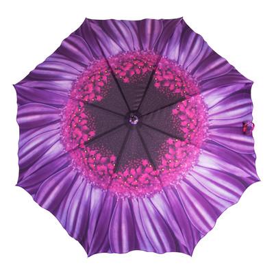 Austin House Purple Daisy 8 Panel Stick Umbrella