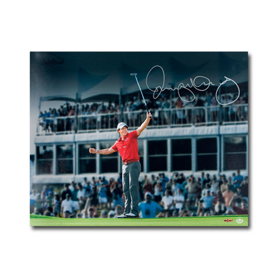Rory McIlroy Autographed Magic Moment 16x20 Photo