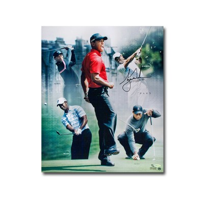 "Tiger Woods Autographed ""Par 5"" 24x20 Collage  -  Unfamed and Limited to 150"