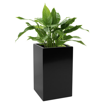 Kanto CARSON Aluminum Indoor and Outdoor Planter - Standard (Black)