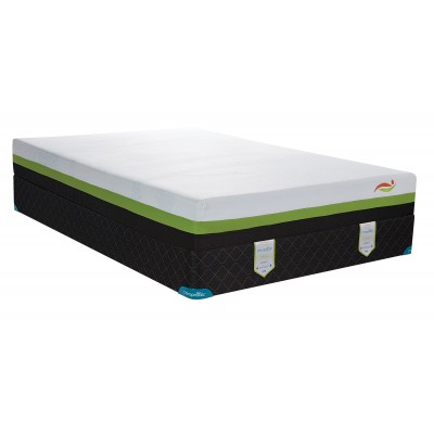 Chiropractic Freedom Smooth Top Firm Mattress Only