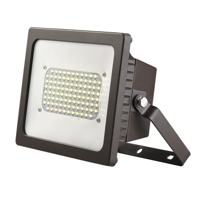 Cast Aluminum Adjustable LED Floodlight w/Dual Voltage