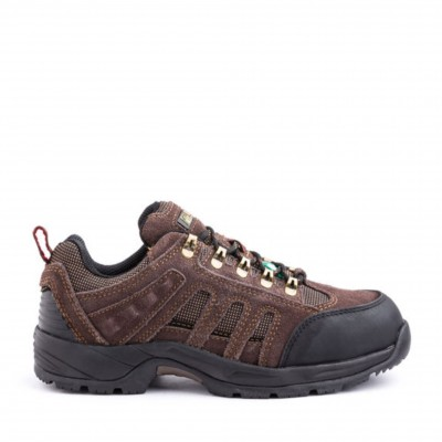 Kodiak Men's Stamina Shoe in Brown
